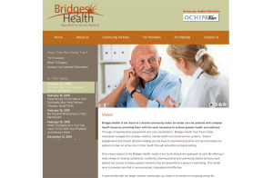 health medical wordpress website programmer