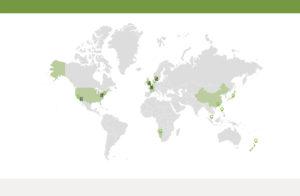 Technology WordPress Website Developer